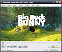 VLC Portable Screenshot